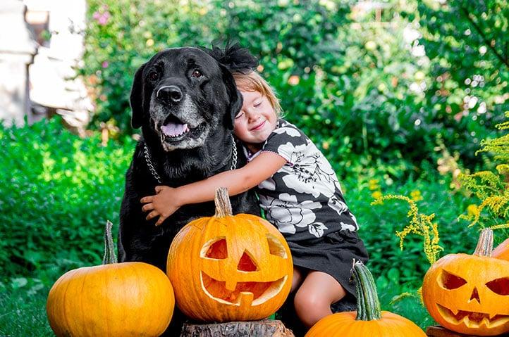 bigstock-Halloween-Child-Dressed-In-Bl-144626729-1